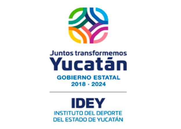 logo idey